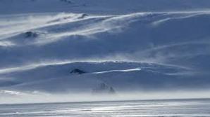 De ce ai dispărut giganţii din Epoca Glaciară