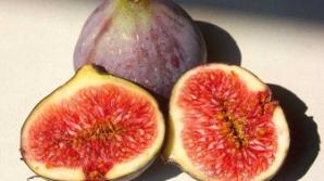Alimente care elimină apa din organism