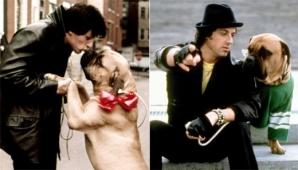 <p><strong>SYLVESTER STALLONE</strong>, atât de sărac încât a fost nevoit să-şi vândă câinele pentru a supravieţui</p>