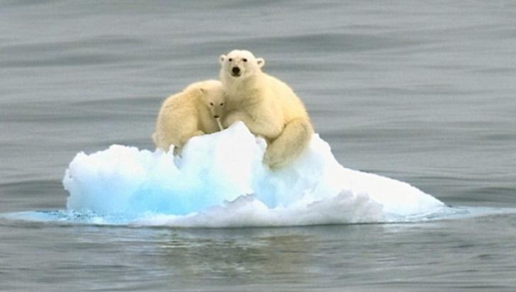"""Avertismentul Organizației Meteorologice Mondiale: """"Temperaturile mondiale vor continua să crească"""""""