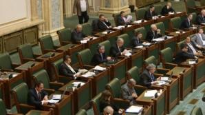 Senat: PSD şi PNL şi-au împărţit preşedinţia a două noi comisii, spre nemulţumirea PDL