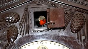 Florica Roman, judecător la Curtea de Apel Oradea, a pretins un ceas cu cuc vechi
