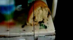 Rudele unui pacient internat la spitalul din Constanţa au filmat gândacii din saloane