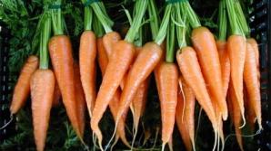 Efectele miraculoase ale morcovilor