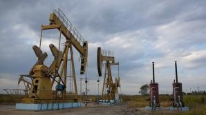 Acualul ministrul al Energiei este fost angajat OMV Petrom