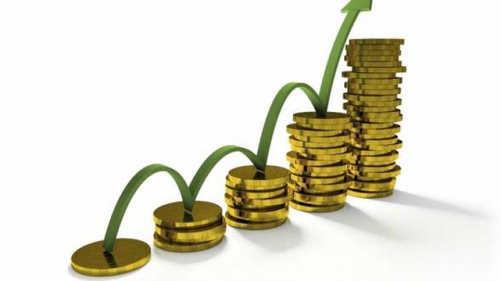 Proiect: Salariul de bază minim brut va creşte în două etape în 2015, de la 900 la 1.050 de lei