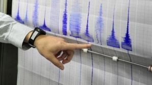 Un cutremur de 6,9 grade pe scara Richter s-a produs pe insula Bouvet din sudul Atlanticului