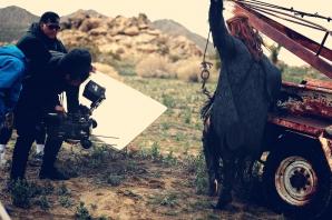 Alexandra Stan pregătește o surpriză fanilor