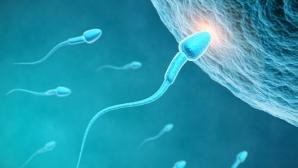 DESCOPERIREA care poate ajuta femeile infertile să aibă copii
