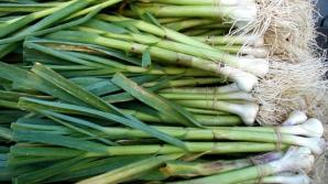 Usturoiul verde este apreciat încă din antichitate pentru proprietățile sale extraordinare