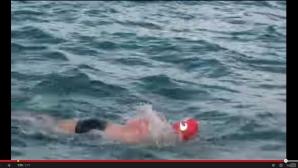 Un înotător care a zărit un rechin a fost salvat de delfini, care au venit alături de el