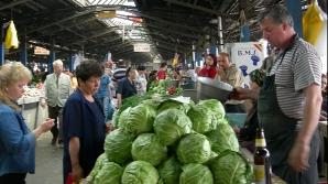 Proiectul de înfiinţare a unor pieţe ţărăneşti în Capitală, respins de consilierii generali