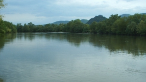 DESCOPERIRE MACABRĂ în râul Mureş