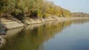 """ATENŢIONARE DE LA """"APELE ROMÂNE"""": Viitură pe râul Vedea pe tot parcursul zilei"""