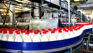 Imvazia laptelui european în România