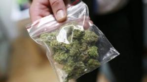 Patru tineri au fost prinşi cu trei kilograme de canabis pe o stradă din Arad