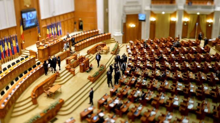 Plen comun pentru a vota Avocatul Poporului și președintele TVR / Foto: MEDIAFAX
