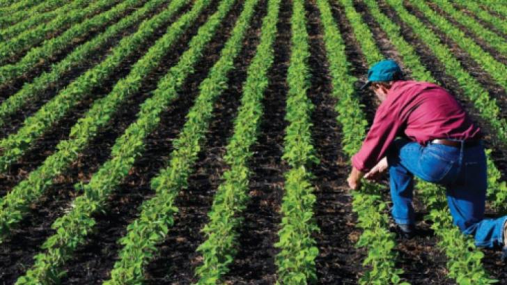 """Bisericile şi mânăstirile vor trebui să demonstreze că sunt """"fermier activi"""""""