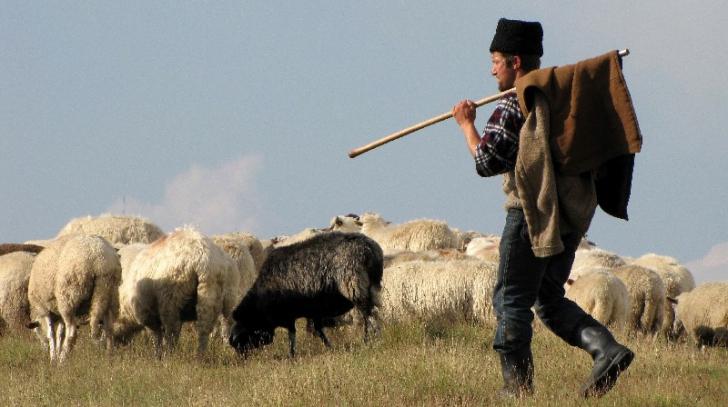STUDIU. PSIHOLOGIA POPORULUI ROMÂN. De la spiritul de turmă la complexul de inferioritate