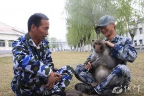 Macacii, noua armă secretă a armatei chineze