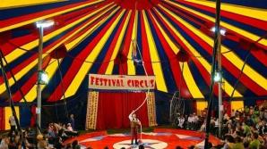 Vaslui: Circul unde s-a prăbuşit o tribună cu spectatori, amendat de ITM cu 30.000 de lei