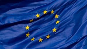 ALEGERILE EUROPARLAMENTARE 2014