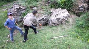 Copiii au găsit kosonii într-o viziună de vulpe.