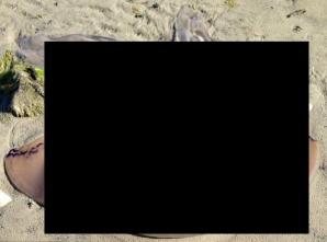 Creatură bizară descoperită pe o plajă