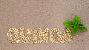 FRESH-REFRESH. Semințele de QUINOA