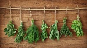 12 utilizări surprinzătoare şi eficiente în casă ale condimentelor
