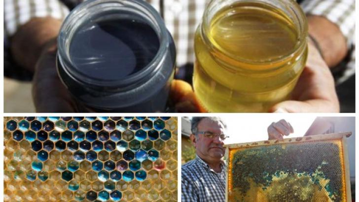 Cum arată mierea după ce albinele mănâncă bomboane colorate