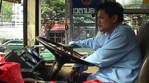 Şoferi cu pamperşi