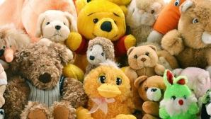 Un nou brand de jucării, Maxi Toys