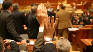 Parlamentul votează luni CA ale BNR, Curţii de Conturi, SRR, preşedintele SRTV şi un membru al ASF