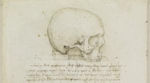 Misterul craniului lui Da Vinci.