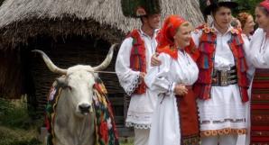 SÂNZIENELE. Obiceiuri agrare: CUNUNA BOULUI / Foto: voceatransilvaniei.ro