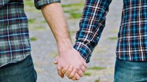 Parteneriatul civil între persoanele de același sex, RESPINS de Camera Deputaților