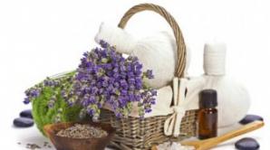 Beneficiile necunoscute lavandei. Are efecte uimitoare asupre tenului şi părului