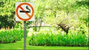 SĂNĂTATE. Plante benefice pentru a renunța la fumat