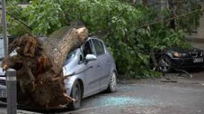 Două persoane, încarcerate după ce un copac a căzut peste maşina în care se aflau