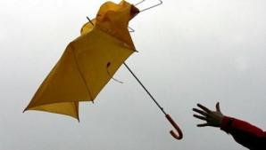 Cod galben de vânt puternic