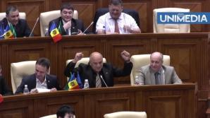 Simona Halep, felicitată în Parlamentul de la Chișinău