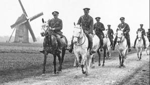 DOSAR HISTORIA. TOP 5 Animale folosite în război: de la cai, la licurici