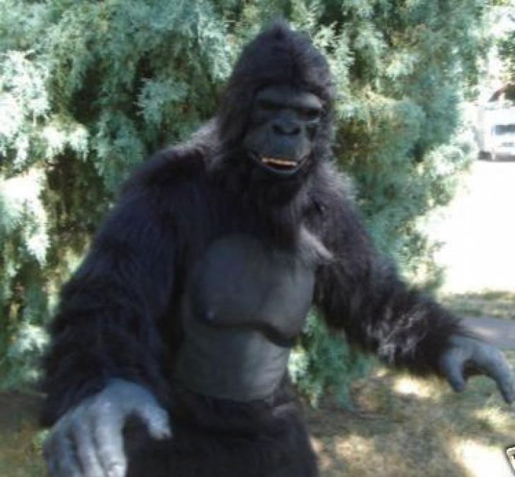 S-a îmbrăcat în costum de gorilă pentru a-şi surprinde prietena. Ce s-a întâmplat mai apoi e ŞOCANT