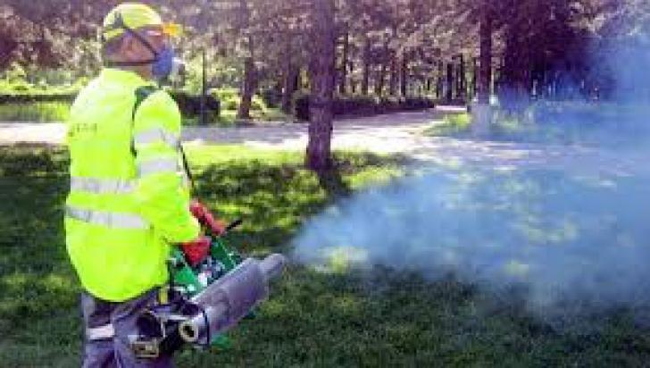 Un nou tratament pentru combaterea țânțarilor din București începe din 1 august