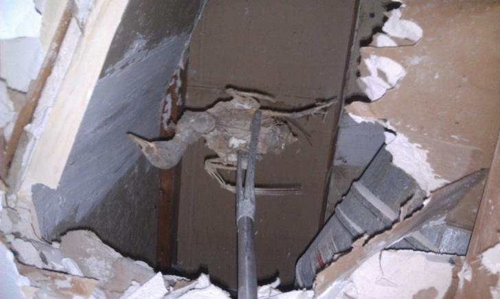 Ce a găsit un om în peretele casei