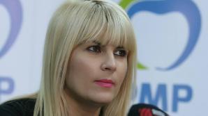Udrea: PMP va face marți o plângere penală împotriva ADS