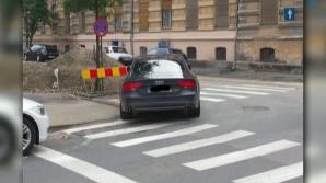 Fina preşedintelui Traian Băsescu, bizon în trafic.