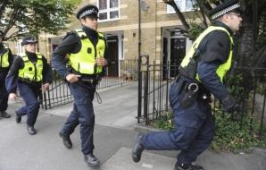 Poliţia britanică a arestat 660 de persoane suspectate de pedofilie