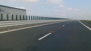 Incident pe Autostrada Transilvania!